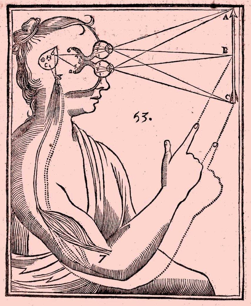 The perception through senses according to René Descartes